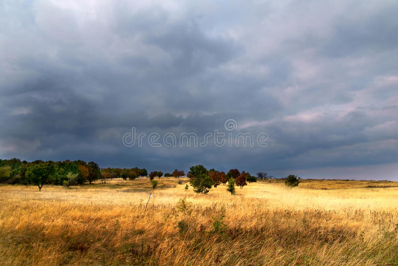 Download Before the storm stock image. Image of meadow, louring - 17948057