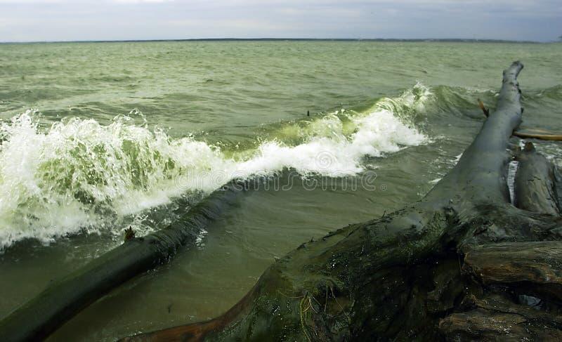 Download Storm arkivfoto. Bild av utomhus, skum, navigering, indikator - 240742