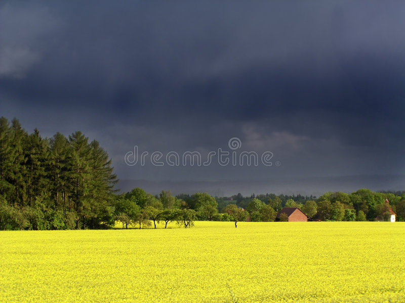 Before the storm. Few moments before the storm royalty free stock photo