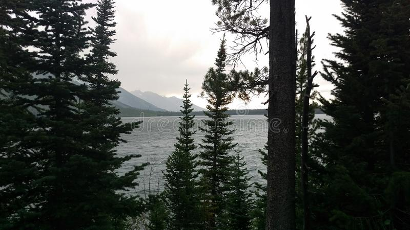 A Storm Over Jenny Lake Through the Trees royalty free stock photos
