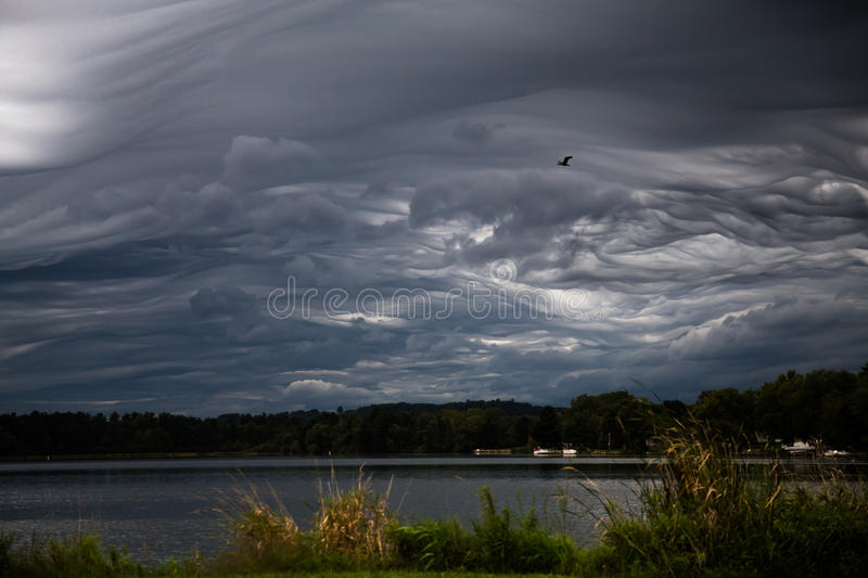 Storm Brewing royalty free stock images