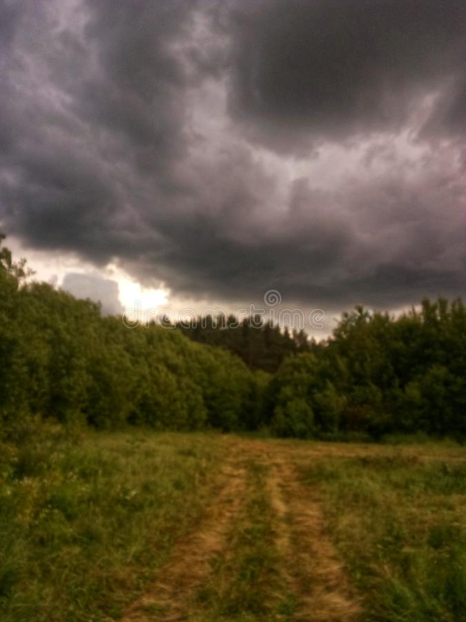 storm cloud over the forest stock image