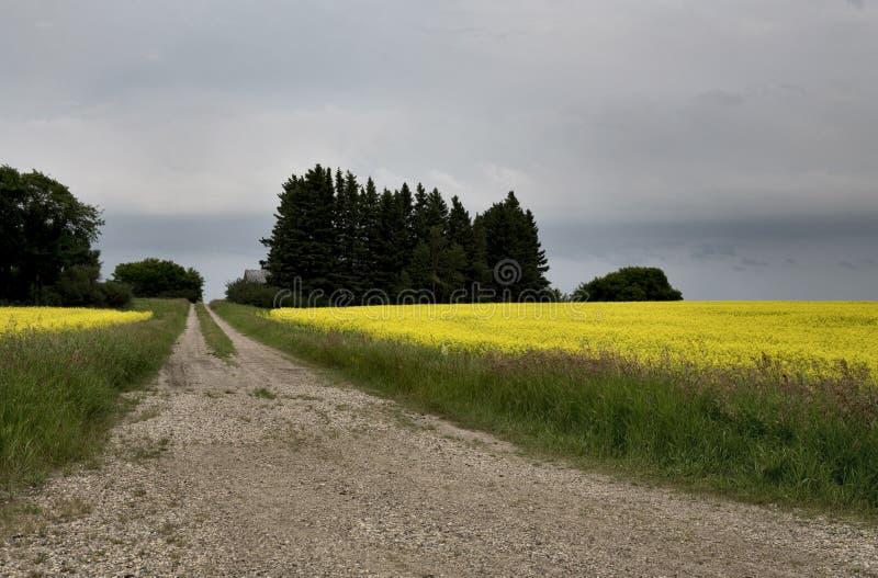 Storm Clouds Canada. Rural countryside Prairie Scene stock photo