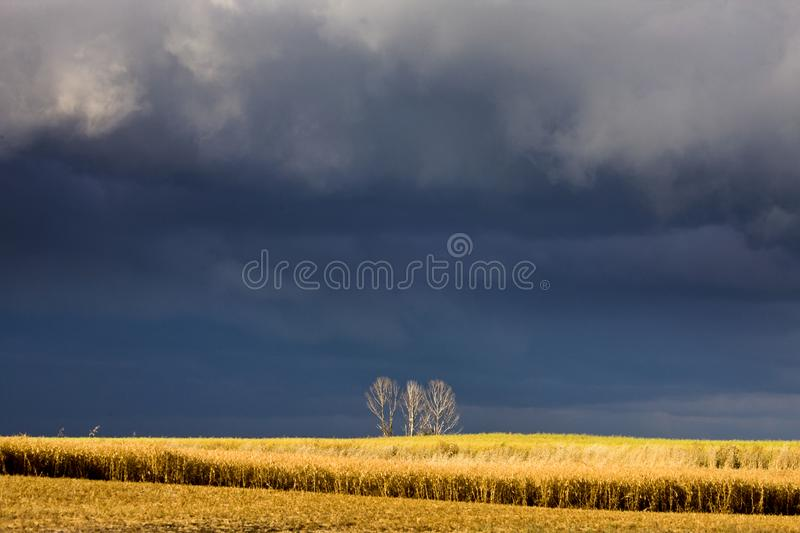 Storm Clouds Canada. Rural countryside Prairie Scene royalty free stock image