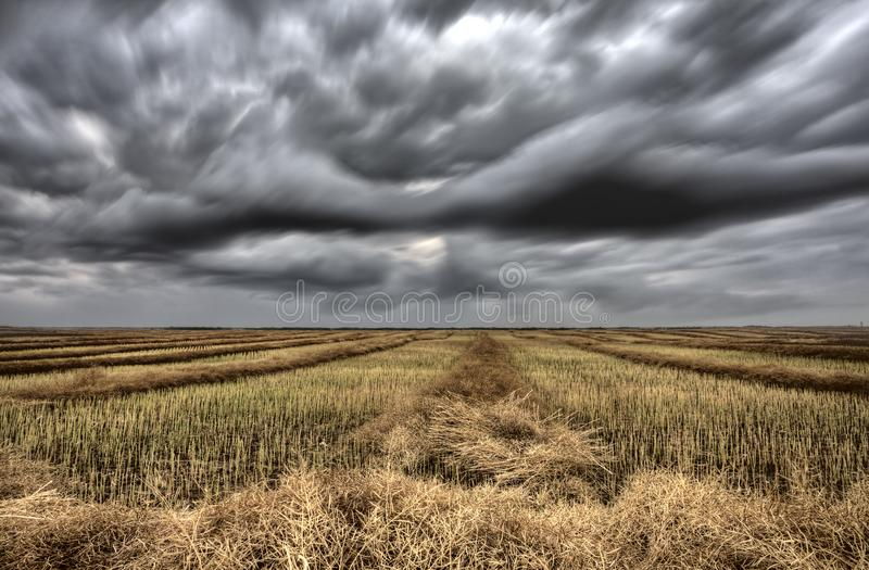 Storm Clouds Canada. Rural countryside Prairie Scene stock photography