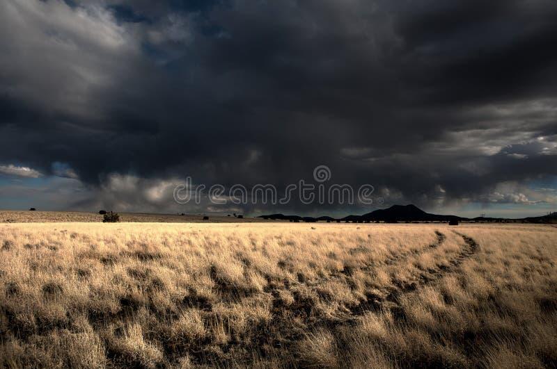 Storm clouds over desert grassland stock images