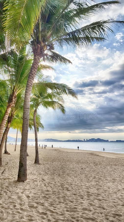 Storm clouds in palm trees on the sea coast royalty free stock photo