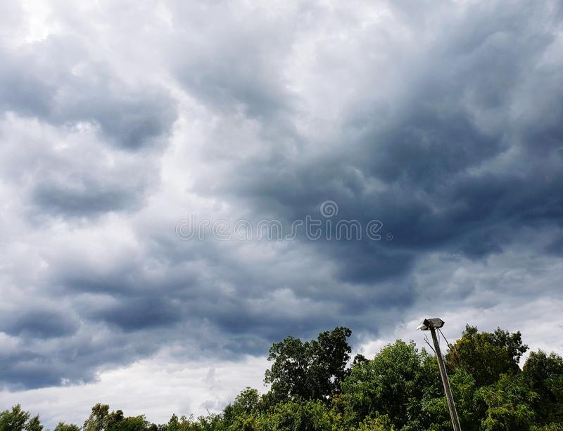 Storm clouds rolling in over a tree line royalty free stock image