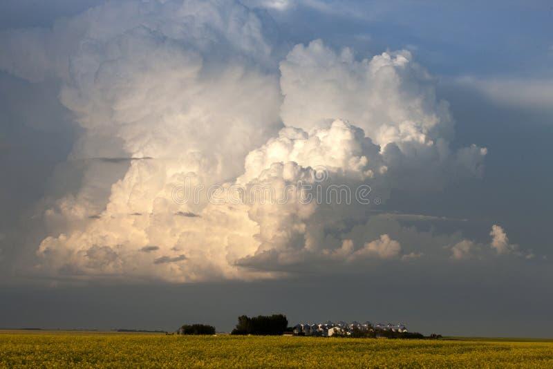 Storm Clouds Saskatchewan. Thunderhead billowing over farm land royalty free stock image