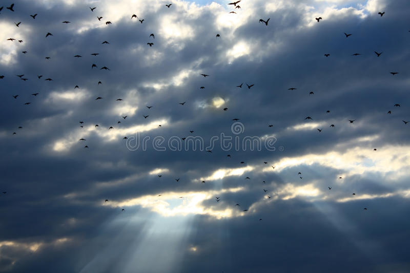 Storm clouds and sun rays royalty free stock photography