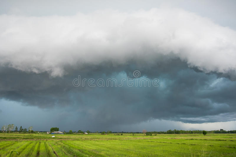 Storm is coming. Rain cloud is moving to ward rice field stock image