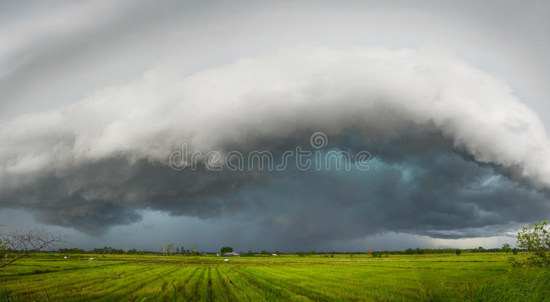 Storm is coming. Rain cloud is moving to ward rice field royalty free stock photo