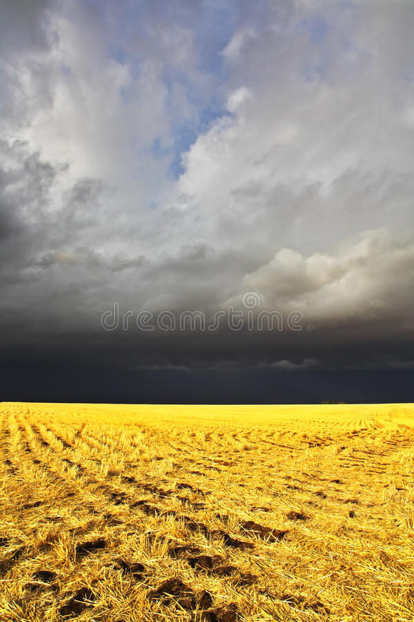 The storm in a countryside begins. The thunder-storm in a countryside in state of Montana begins royalty free stock images