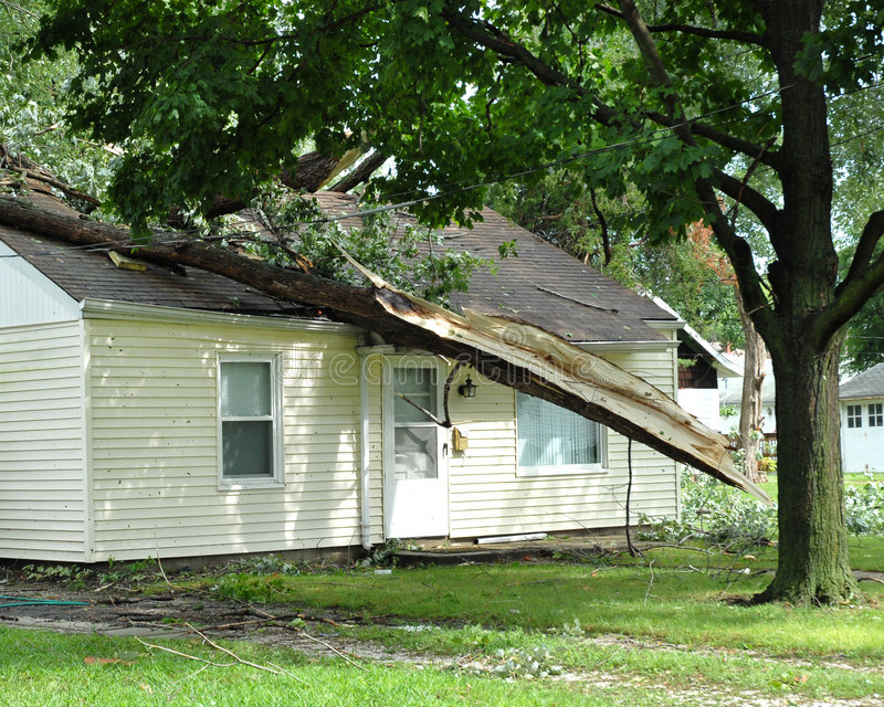 Download Storm damage stock photo. Image of monsoon, policy, hurricane - 3012406