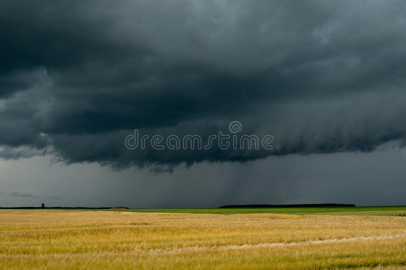 Download Storm Dark Clouds Over Field Stock Image - Image: 21541543