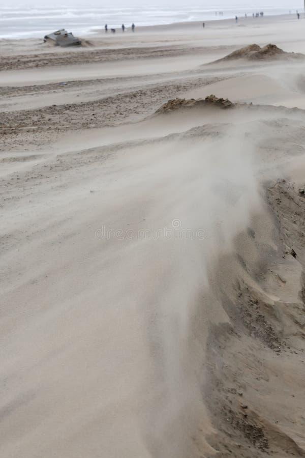 Storm day at the strand of Bloemendaal aan Zee (Nederland) royalty-vrije stock fotografie