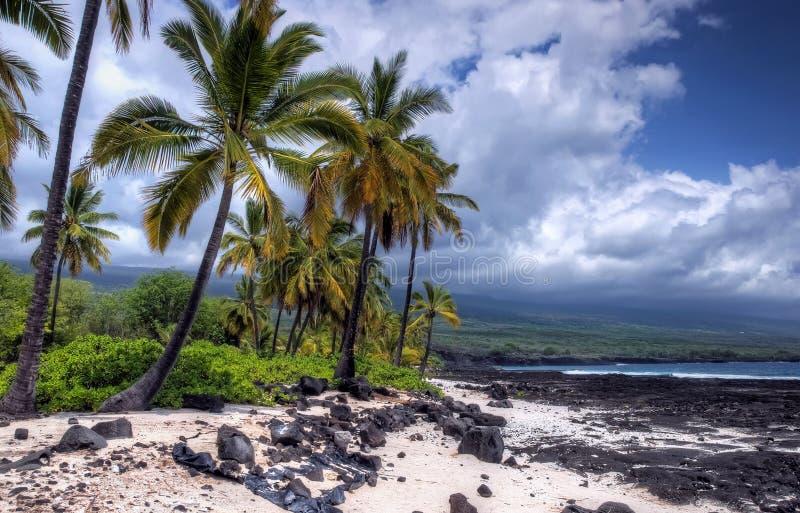 storm för strandoklarhetslava arkivbilder