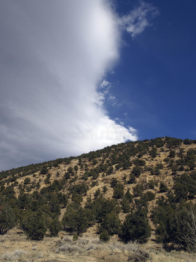 Download Storm Front stock image. Image of arid, shrubs, front - 24031635