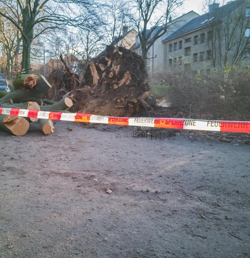 Storm in Hamburg trees overturned with cordon tape Feuerwehr Sperrzone German text for fire department restricted area.  stock photo