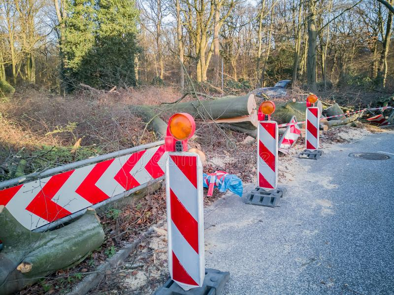 Storm in Hamburg trees overturned with cordon tape Feuerwehr Sperrzone German text for fire department restricted area.  royalty free stock photo