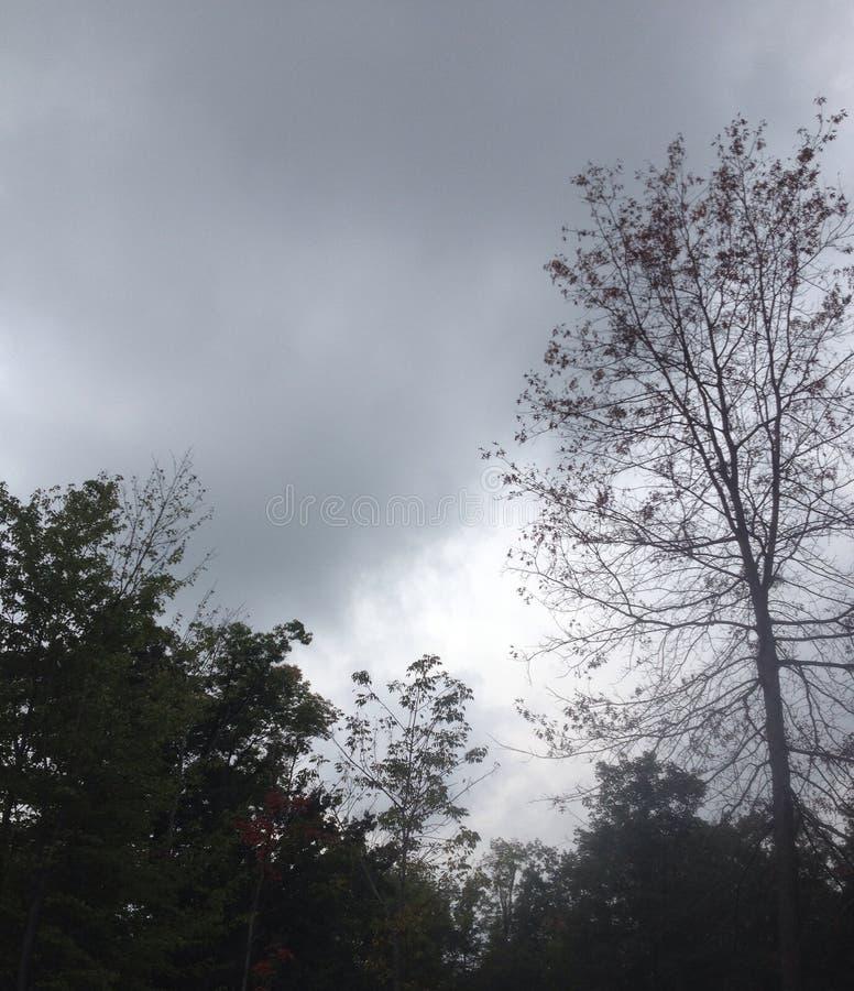Storm komst royalty-vrije stock foto's