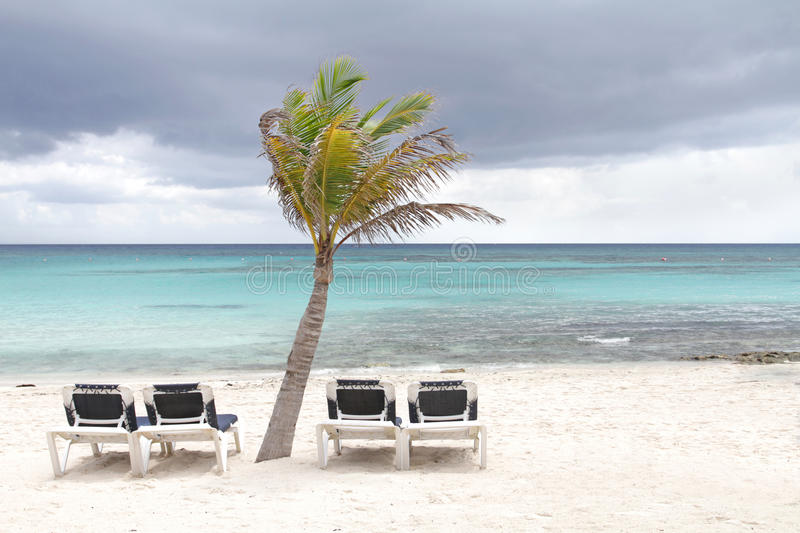 Download Storm on Tropical Beach stock image. Image of caribbean - 16990751