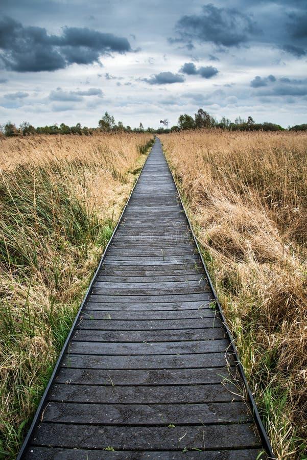 Stormachtig hemellandschap over moerasland in platteland met promenade royalty-vrije stock afbeeldingen