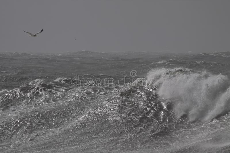 Stormachtige brekende golven stock foto's