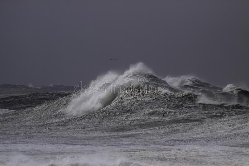 Stormachtige brekende golven stock afbeelding