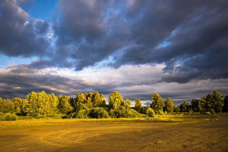 Stormachtige hemel en landschapsbomen in het begin van zonsondergang royalty-vrije stock afbeelding