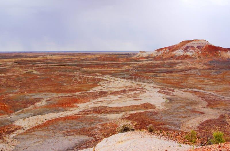 Stormig målad öken arkivbild