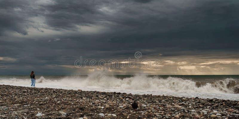 stormig strand arkivbild