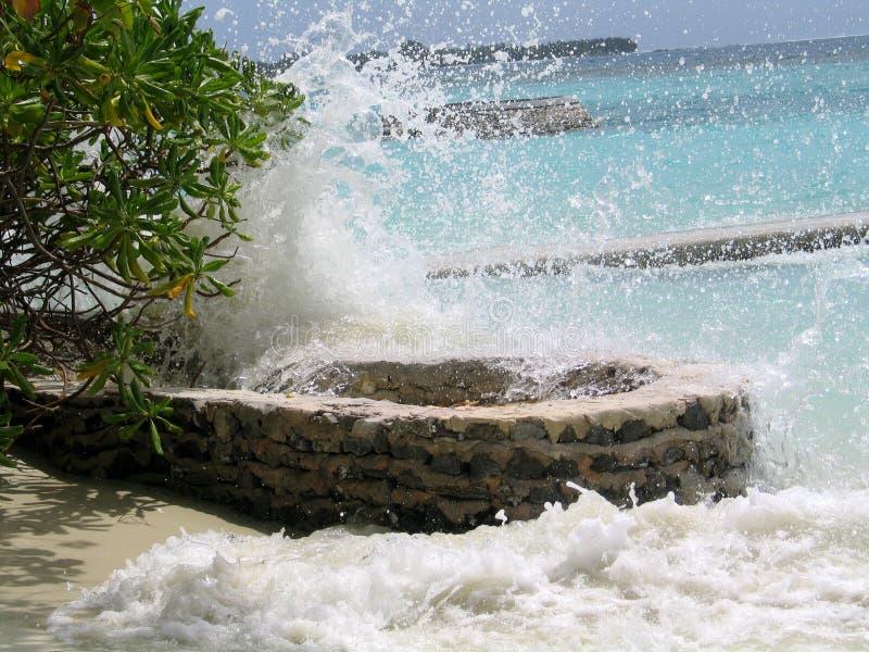 Stormiga vågor av Indiska oceanen i Maldiverna royaltyfri foto