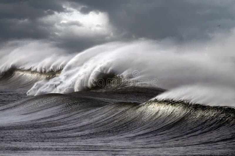 stormiga waves royaltyfri foto