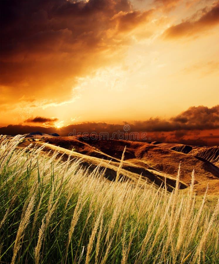 Stormloop bij de zonsondergang stock foto's