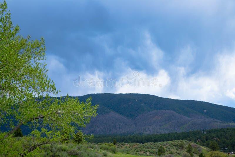 Stormmoln över Rocky Mountain Foothills royaltyfria foton