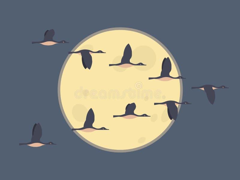 Stormo di volata delle oche di migrazione Concetto degli uccelli migratori Fondo del cielo notturno con la luna royalty illustrazione gratis