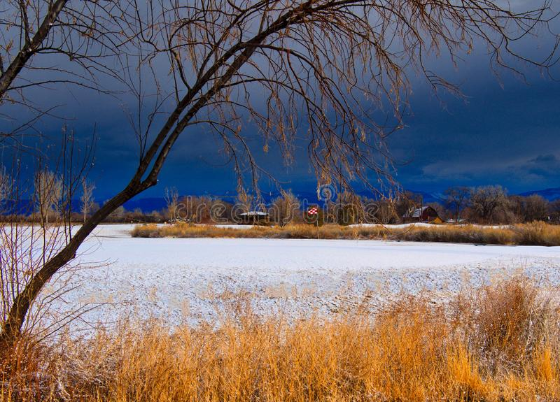 Winter Golf in Colorado. Stormy February day on a snow covered golf course.  Not a good day for summer sports stock photo