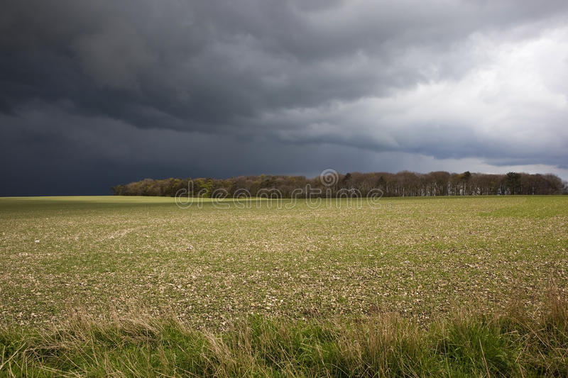 Download Stormy Fieldscape Stock Photography - Image: 24450322