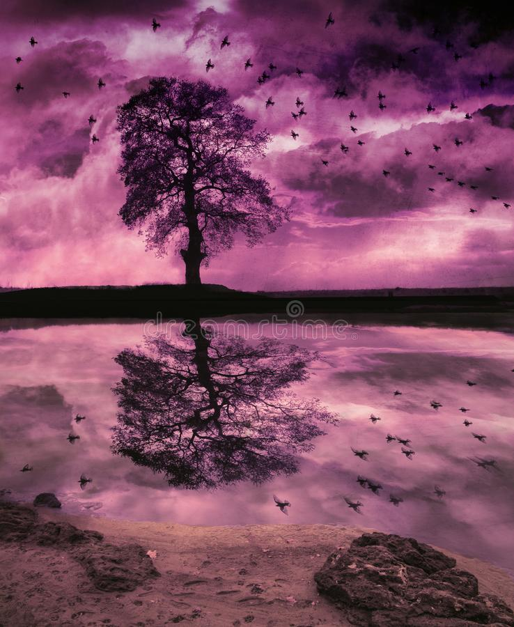 Stormy lakeside fantasy. Grunge fantasy landscape with birds flying towards a lone tree against dramatic sunset sky reflected in a lake. Surrealist illustration