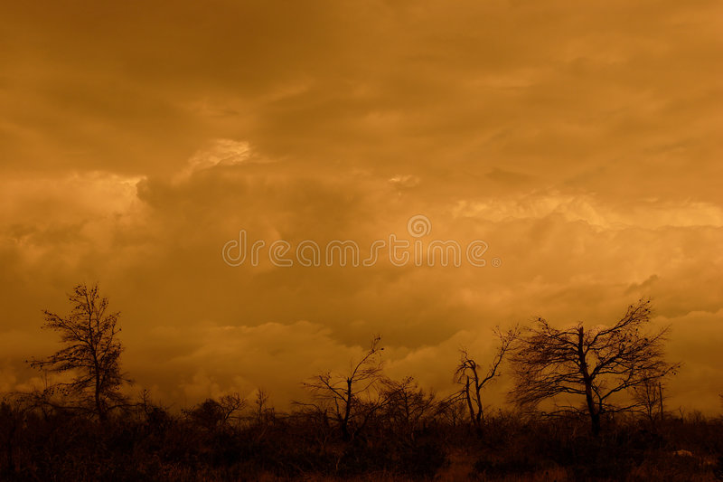 Stormy landscape. Dramatic stormy landscape, sunset with yellow filter royalty free stock photos