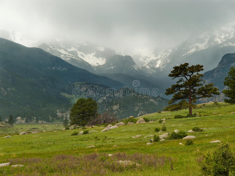Stormy Mountain Meadow. Spring storm closes in the mountain meadow with snowy mountains in Rocky Mountain National Park, Colorado royalty free stock photo