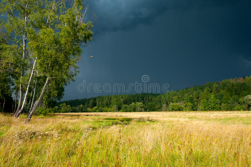Download Stormy Skies Over The Field Royalty Free Stock Image - Image: 32716326