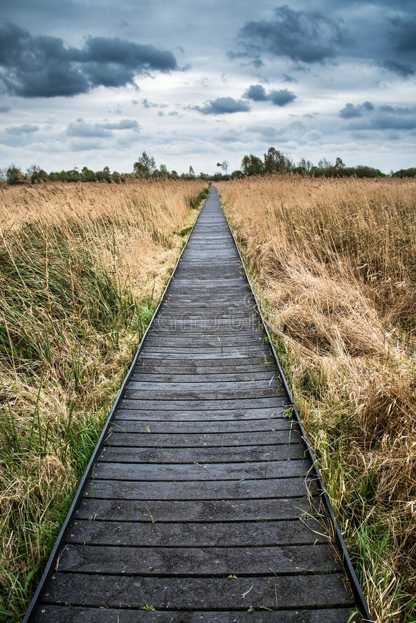 Stormy sky landscape over wetlands in countryside with boardwalk royalty free stock images