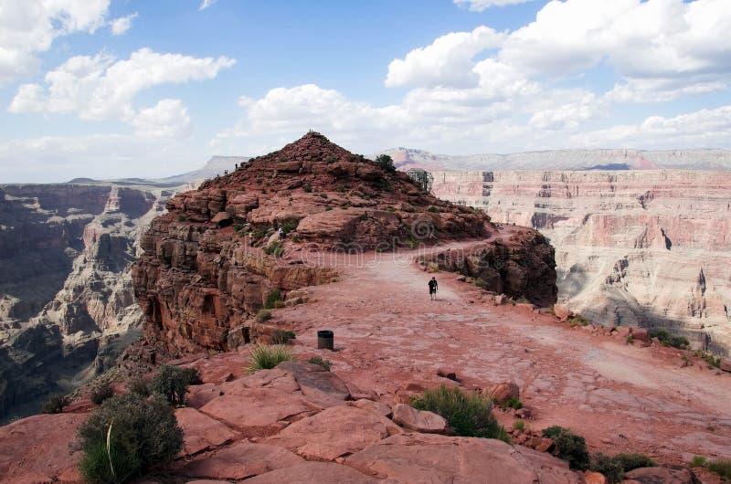 storslagen guanopunkt för kanjon royaltyfri bild