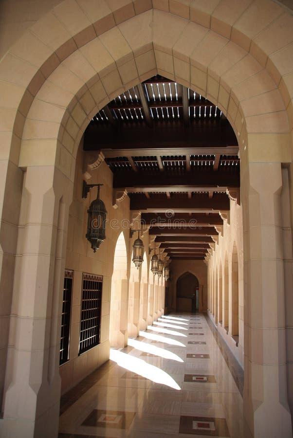 storslagen moskémuscat arkivbilder