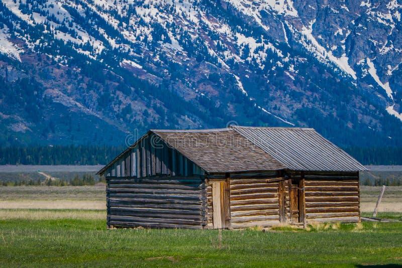storslagen nationalparkteton wyoming Wood kabin på en guld- gräsprärie mot de storslagna Teton bergen royaltyfria bilder
