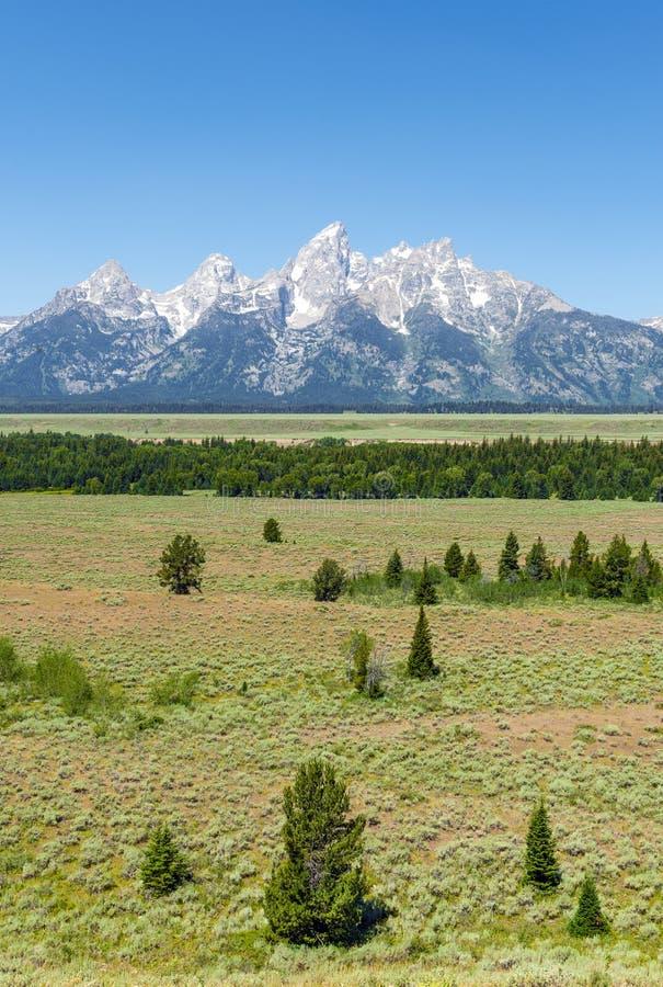 storslagen nationell panorama- parkteton USA visar wyoming arkivbild