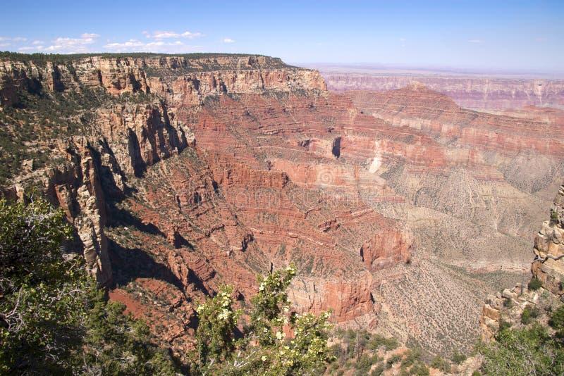 storslagen norr kant för kanjon arkivbilder