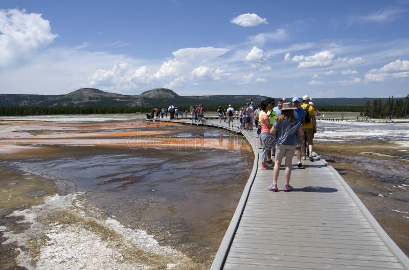 Storslagen prismatisk våryellowstone nationalpark arkivfoton